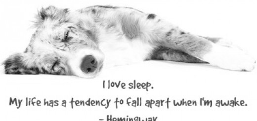 Natural Sleep Remedy For Dogs