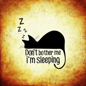 sleep debt and the mortgaged mind Hello forums mi logo slider (free) custom annotated bibliography ghostwriter sites this topic is: not resolved tagged: custom annotated bibliography.